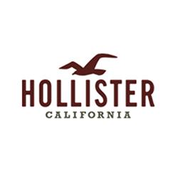 Hollister Inc